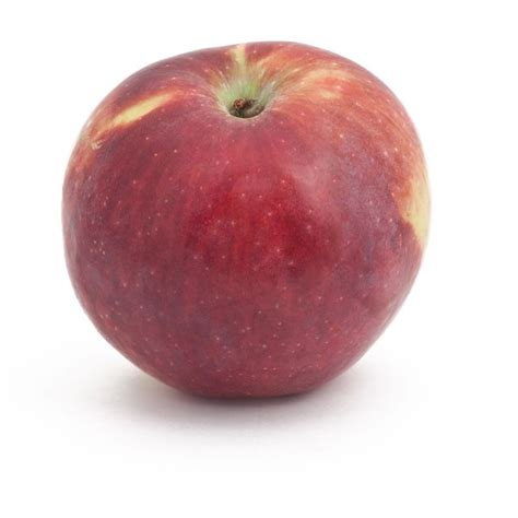 Liberty Apple Tree (Semi-dwarf) | Apple tree, Apple ...