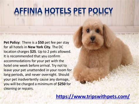 Petfriendly Policies  Petfriendly Hotels Guide