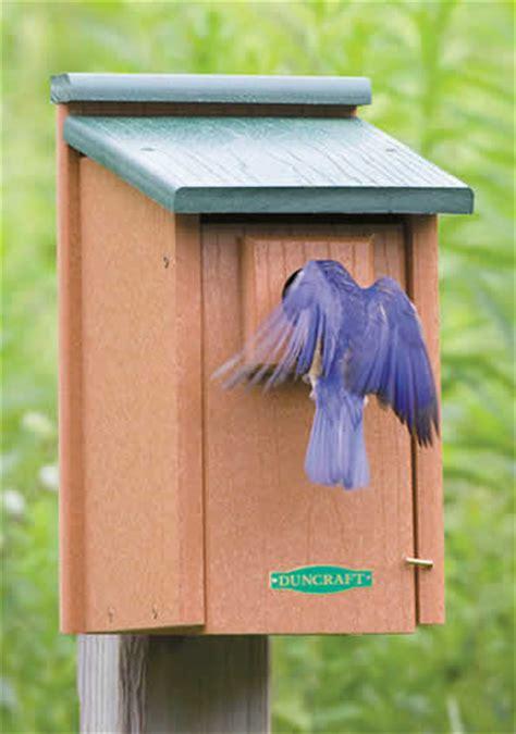 duncraft com duncraft 2921 eco friendly bluebird house