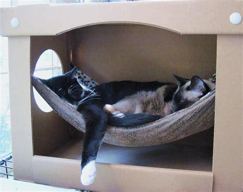 cat hammock diy cat hammock in a box