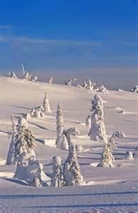 Riisitunturi National Park Finland