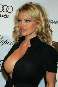 Pamela Anderson X : photos of pamela anderson ~ Medecine-chirurgie-esthetiques.com Avis de Voitures