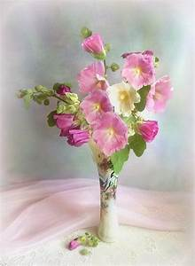 65 best images about Flower Still Life on Pinterest ...