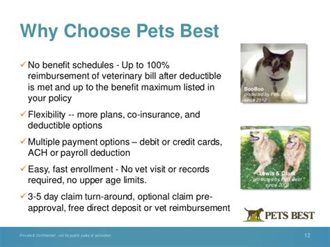 pets  insurance employer benefit information june