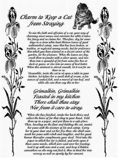 Spells Witch Cat Keep Spell Wiccan Wicca
