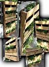 Vertical Pallet Garden   Lone Star Farmstead pallet vertical garden project