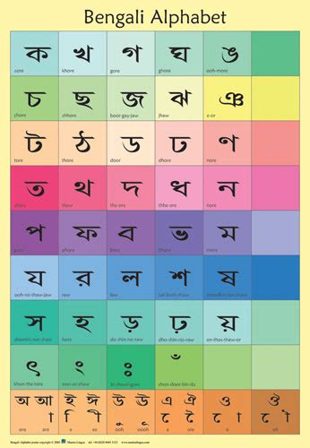 bengali alphabet poster  linguist
