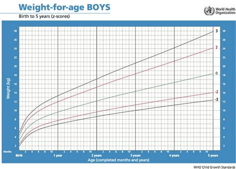 4 Best Images Of Weight Chart For Your Age Height Weight