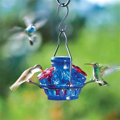 birds unlimited hummingbird feeder hummingbird feeder tech and gadgets