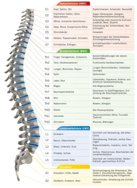 Bandscheibenvorfall  Ursachen, Symptome von