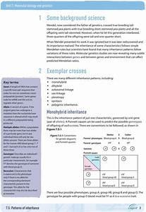 33 Molecular Biology Worksheet Answers