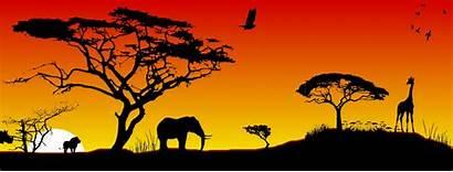 Africa Animals Desktop Backgrounds Wallpapers