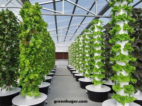 hydroponic tower system hydroponic grow systems tower