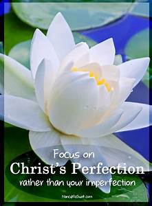 """""""Focus on ... White Water Lily Quotes"""