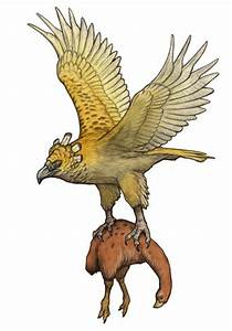 Phoenix Bird Drawing User 3mptylord Custom Creatures Harpagornis Official Ark