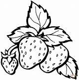 Colorare Strawberry Disegni Coloring Strawberries Supercoloring Super sketch template