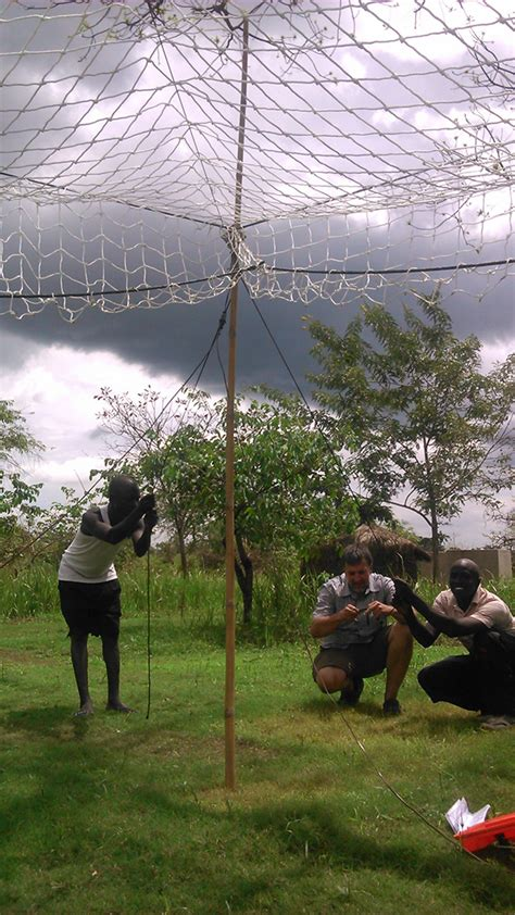 Trap Techniques: To Aid African Research - THE WILDLIFE ...