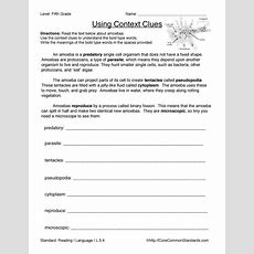 Fifth Grade Common Core Worksheets  Have Fun Teaching