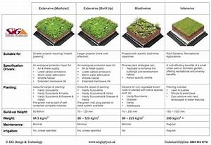 Green Roof Types And Weight Comparison Guide