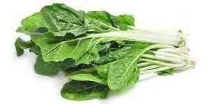 cuisiner betterave légume vert liste d 39 a à z percer le secret des légumes