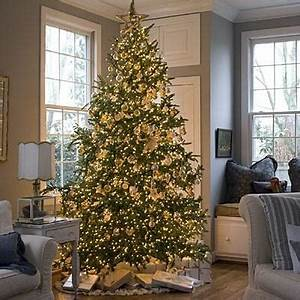 Sapin de Noël 30 magnifiques sapins pour vous inspirer ce