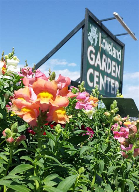Loveland Garden Center your guide to 14 northern colorado garden centers