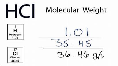 Mass Molecular Molar Hcl Weight
