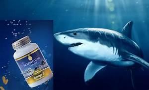 Препараты из жира печени акулы