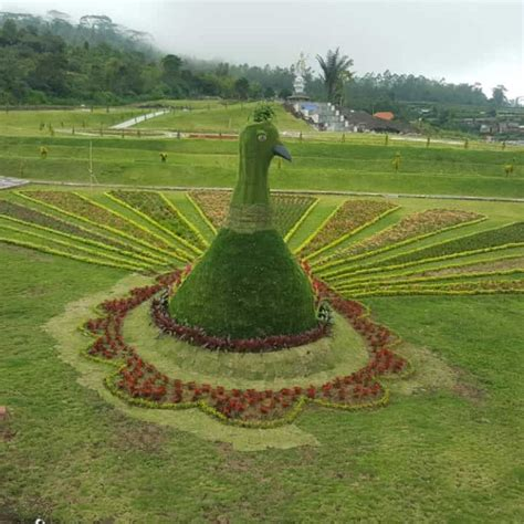 blooms garden bedugul bali objek wisata terkini