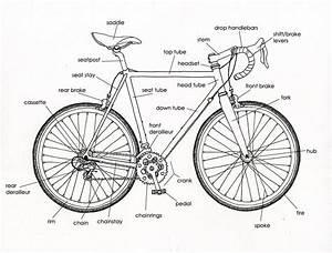 bicycle diagrams printable diagram With mtb parts diagram