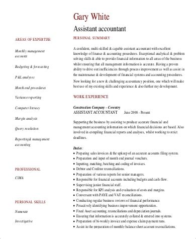 Professional Summary For A Resume by Sle Professional Summary Resume 8 Exles In Pdf