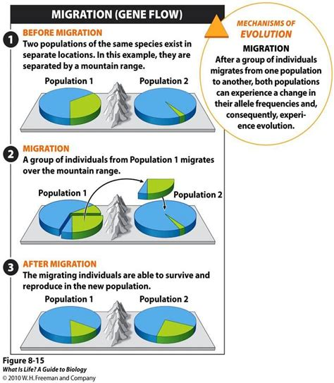 Modified Behavior Definition by Answers For Evolution Behavior Population Ecology