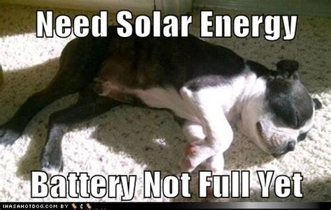 Solar Meme - 17 best images about solar energy meme s on pinterest night funny puns and solar