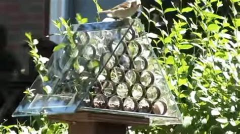 brilliant squirrel proof bird feeder