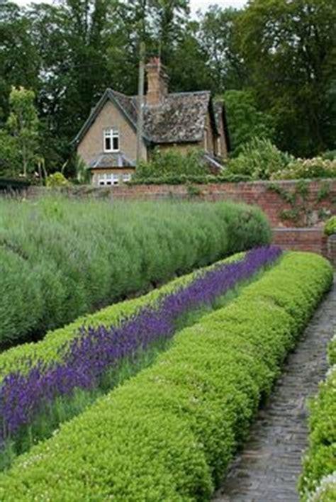 1000+ Images About Lavender Cottage On Pinterest