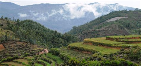 ten places to visit in and around kodaikanal lonely planet india