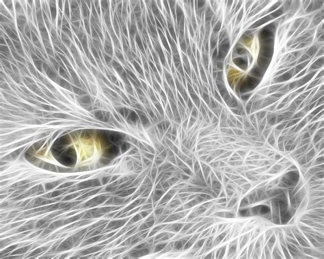 Cool Animal Wallpaper Light - cool animal wallpaper light 8 1280x1024 wallpaper
