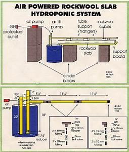 Diy Hydroponic Gardens Pdf