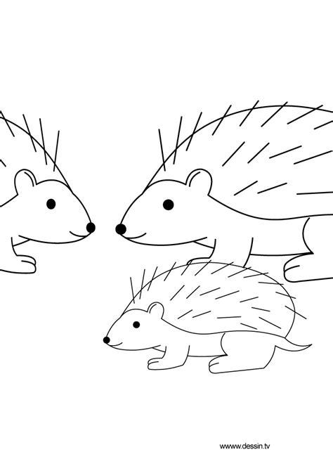 coloring hedgehog