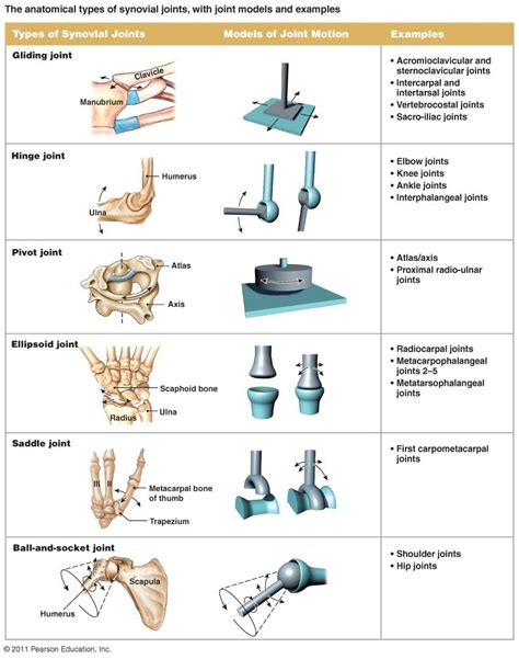 all joinery here are some types of joints and how they differ in the depending on the function this