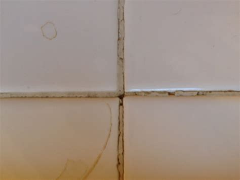 bathroom tile grout repair bathroom tile grout repair