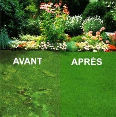 toutes les infos pour bien entretenir votre pelouse