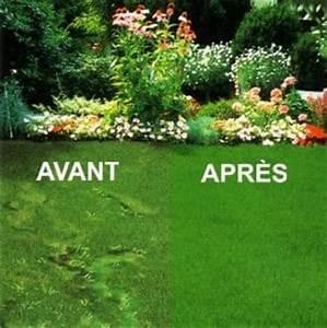 Quand Semer Du Gazon : toutes les infos pour bien entretenir votre pelouse ~ Dailycaller-alerts.com Idées de Décoration