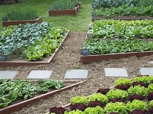 Plantes Amies Et Ennemies Au Potager : rotation des cultures au potager des exemples ~ Melissatoandfro.com Idées de Décoration