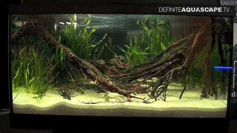 Aquascaping  Aquarium Ideas From Zoobotanica 2013, Pt5