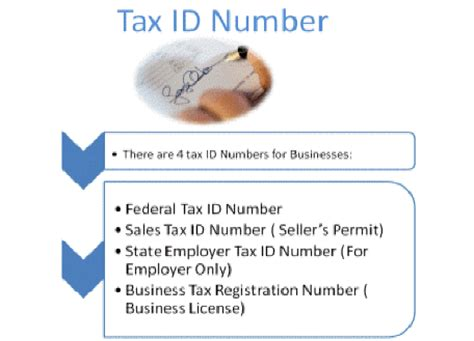 What Is A Tax Id Number?. Asphyxiation Signs Of Stroke. Labrador Signs. Selfish Signs. Traveler Signs Of Stroke. Hot Water Signs. Campsite Signs Of Stroke. Royal Signs. Hosereel Signs