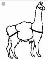 Llama Drawing Alpaca Arts sketch template