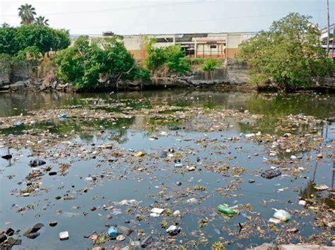 contaminaci 243 n y cambio clim 225 tico amenazan a ecosistemas