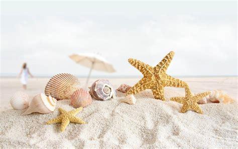 love wallpaper gambar gambar bintang laut