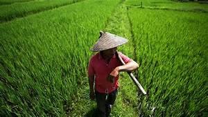 Laos profile - in pictures - BBC News